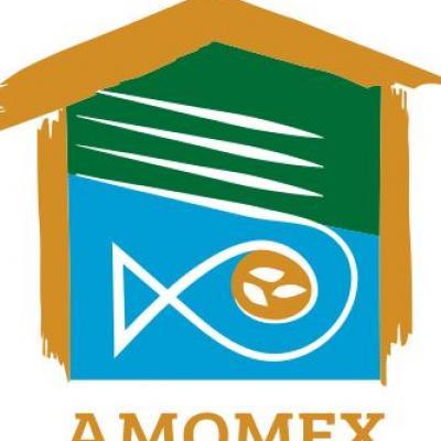 AMOMEX